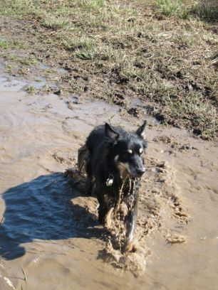 """I was sorta a """"fountain of mud"""" here"""