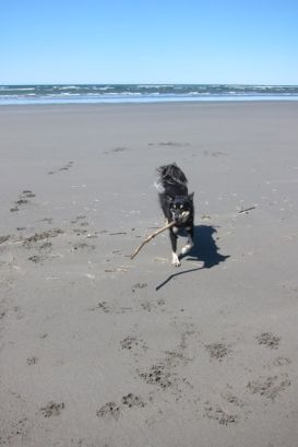 A game of stick