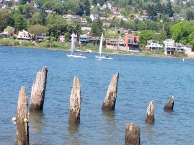 Sail boats going by