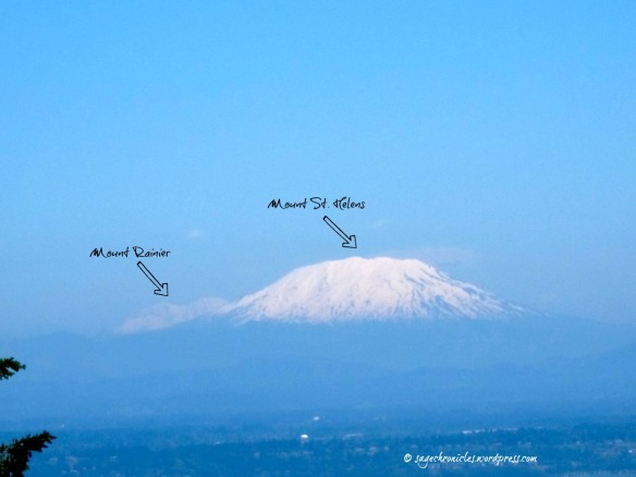 Mt. Rainier & Mt St Helens