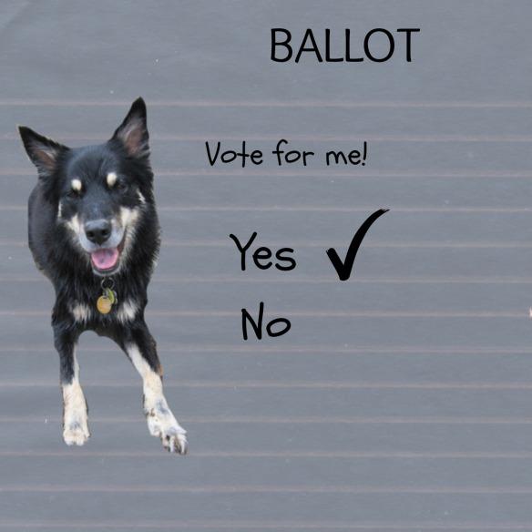 Sage's ballot