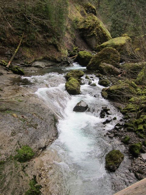 Tanner Creek rapids