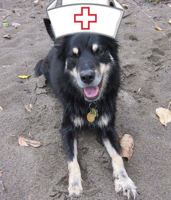 Nurse Sage
